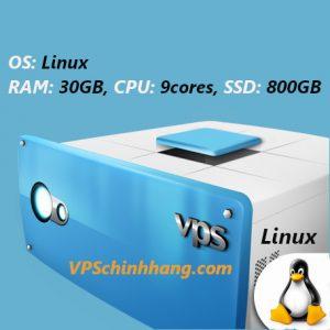 VPS Linux RAM 30GB, 9cores, SSD 800GB