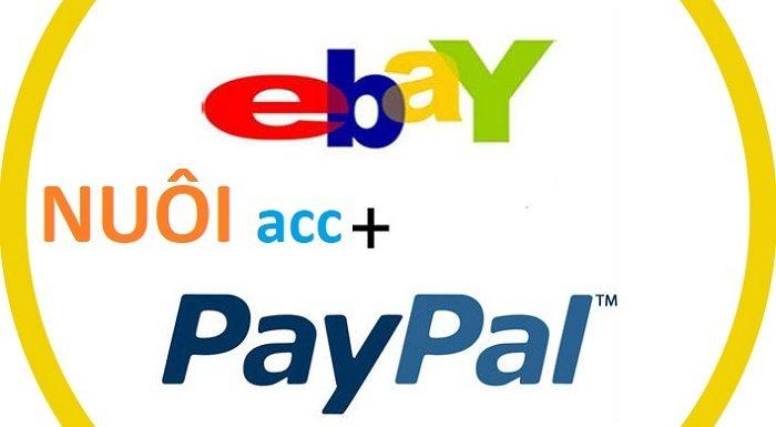 Thuê VPS nuôi account Paypal, Amazon, Ebay… cần lưu ý những điều quan trọng này