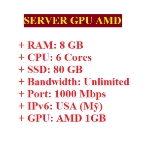 Server RAM 8GB có GPU AMD 512MB