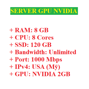 Server có GPU Nvidia 2GB