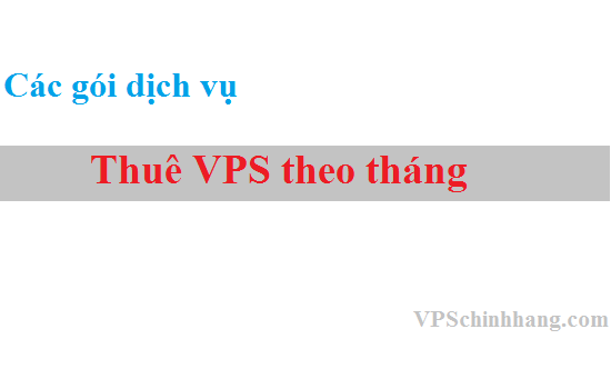 Thuê VPS theo tháng ở đâu? TOP dịch vụ VPS theo tháng